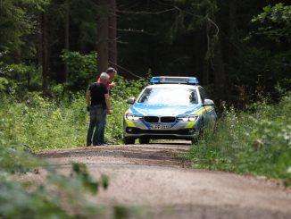 Ein Polizeiauto im Wald (Symbolfoto)